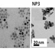 China Garten Neu Nanomaterials Free Full Text