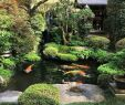 China Garten Schön How Beautiful is This Small Japanese Garden 🏯 In the Past