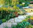 Deavita Gartengestaltung Neu Gartenweg Anlegen – 109 Gestaltungsideen Mit Spannungsvollen
