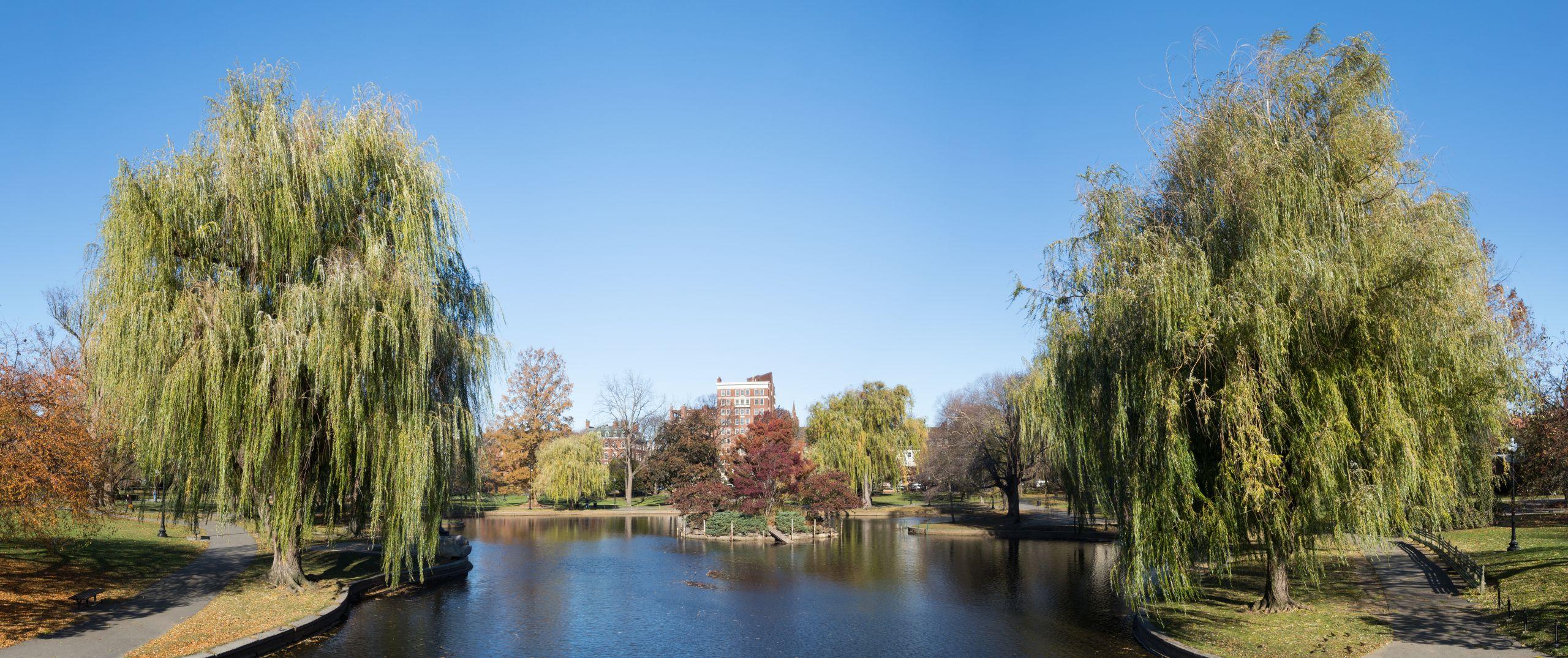 Boston Public Garden % p