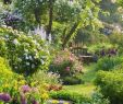 Englischer Garten Anlegen Schön 24 Beautiful Small Cottage Garden Ideas for Backyard