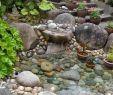 Englischer Garten Anlegen Schön Elegant Garten Mit Steinen Anlegen Beste