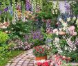 Englischer Garten Anlegen Schön Pin by Jamal Al On Beauty