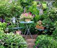 Englischer Garten Anlegen Schön Wie Sie Ihren Garten üppig Machen Garten Ihren Machen