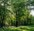 Englischer Garten Berlin Genial Best Gardens In Germany