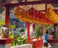 Englischer Garten Parken Einzigartig Penang Zwischen Den Jahren Oder Reif Für Insel