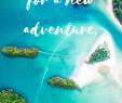 Faszination Garten Genial Inspiring Travel Quotes You Need In Your Life Pinterest