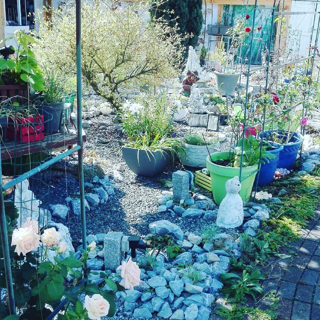 Garten Anlegen Neubau Frisch Oha Fast Fertig Garten Arbeit Gartenideen