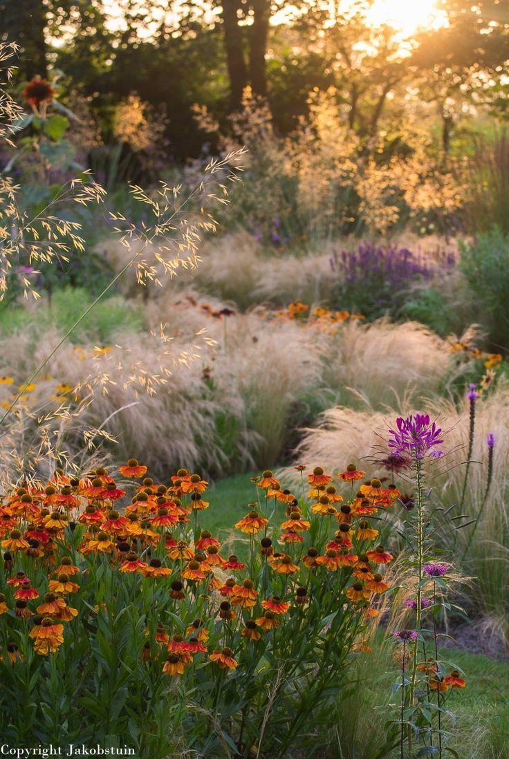 Garten Moorriem Frisch 1213 Best Ideas Natural Gardens Images