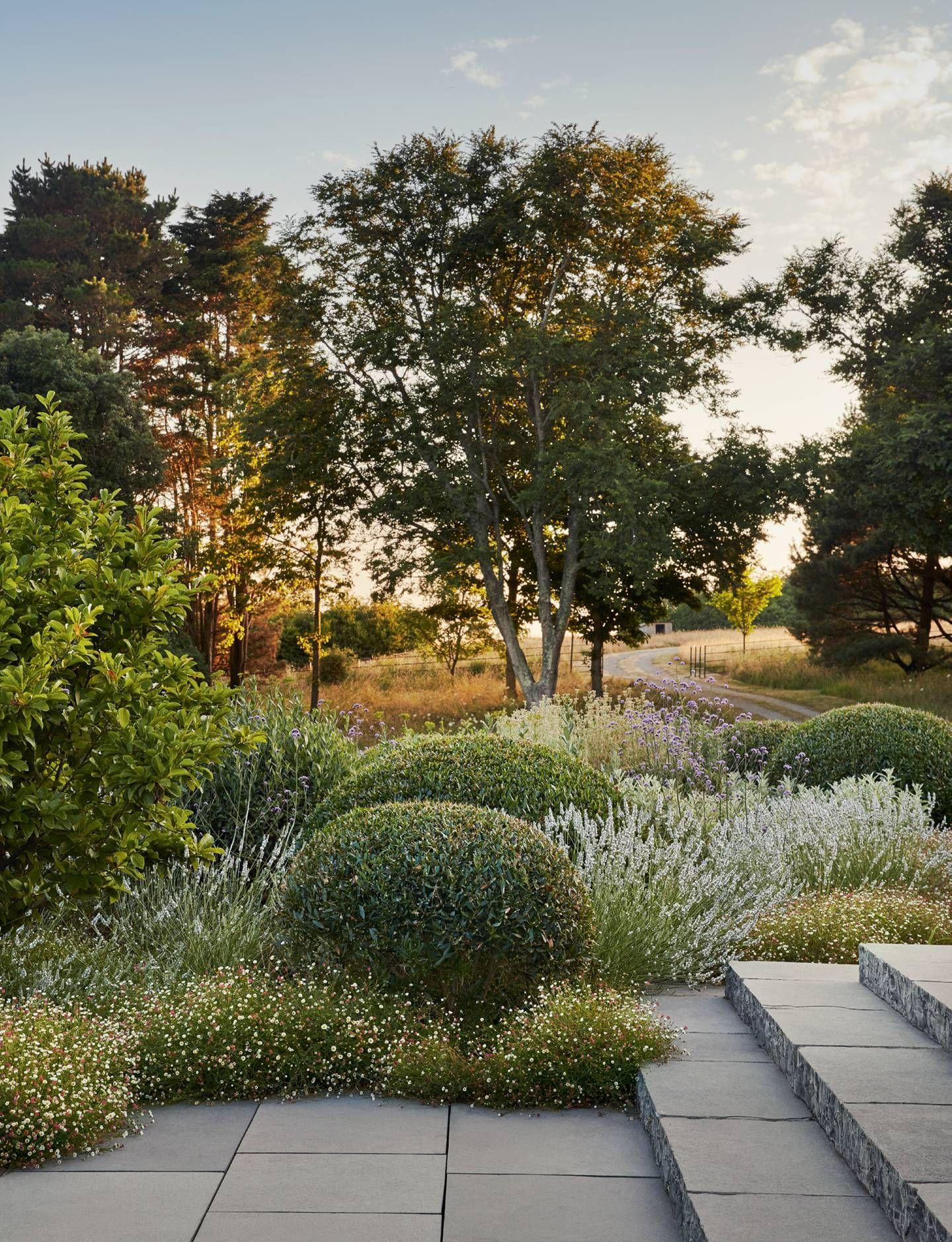 Garten Moorriem Schön 1296 Best Garden Images In 2020