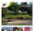 Garten Pflege Einzigartig Wunsiedler Oktober 2018 by Harry Ipfling issuu