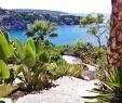 Garten Reihenhaus Frisch Pin by Penelope Alexitch On Ibiza House In 2020