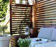 Garten Salbei Schneiden Einzigartig 35 Inspirierend Wohnen Und Garten Landhaus Einzigartig