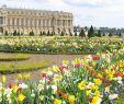Garten Versailles Einzigartig Jardins Du Ch¢teau De Versailles Versailles France the