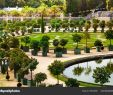 Garten Versailles Elegant Beautiful View Palace Versailles Garden Citrus Trees