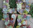 Gartendeko Selber Machen Einfach Genial Gartendeko Selber Machen Einfache Und Günstige Bastelideen