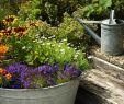 Gartendeko Selber Machen Gartendeko Neu Coole Gartendeko Selber Machen Deko Ideen