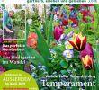 Gartenflora Abo Inspirierend Cfcfcfcfecefcefy by Elcicario43 issuu