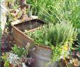 Gartenideen Kleine Gärten Gestalten Best Of Upcycling Ideen Garten Mit Upcycling Ideen Garten 3 Best