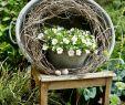 Gartenideen Kleine Gärten Gestalten Einzigartig Die 1146 Besten Bilder Von Garten Und Gartendeko In 2020