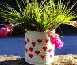 Geldgeschenk Garten Basteln Schön 6 Hübsche Geschenkideen Zur Blechernen Hochzeit