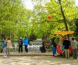 Giesinger Garten Schön Visit Munich S English Garden