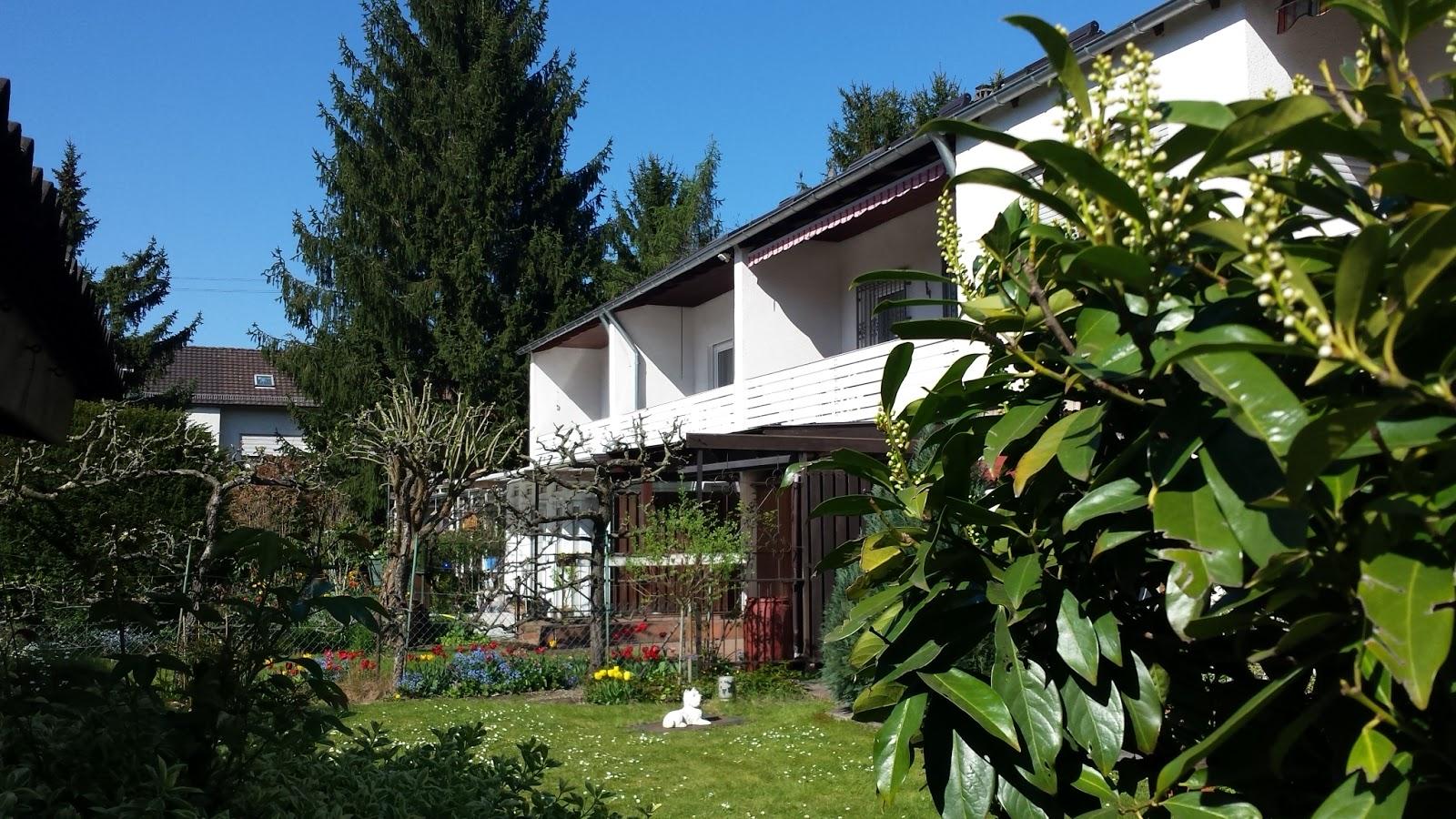 Hausen typische Reihenhäuser und Gärten in der Willi Brundert Siedlung 19 04 2015