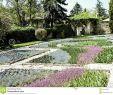 Herrenhauser Garten Inspirierend Alley In the Gardens the Balchik Palace Dobrich Province