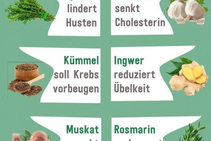 Ingwer Im Garten Frisch 32 Luxus Ingwer Im Garten Einzigartig
