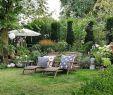 Insektenfreundlicher Garten Genial Die 1384 Besten Bilder Von Garten In 2020