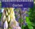 Insektenfreundlicher Garten Genial Die 2627 Besten Bilder Von Garten In 2020
