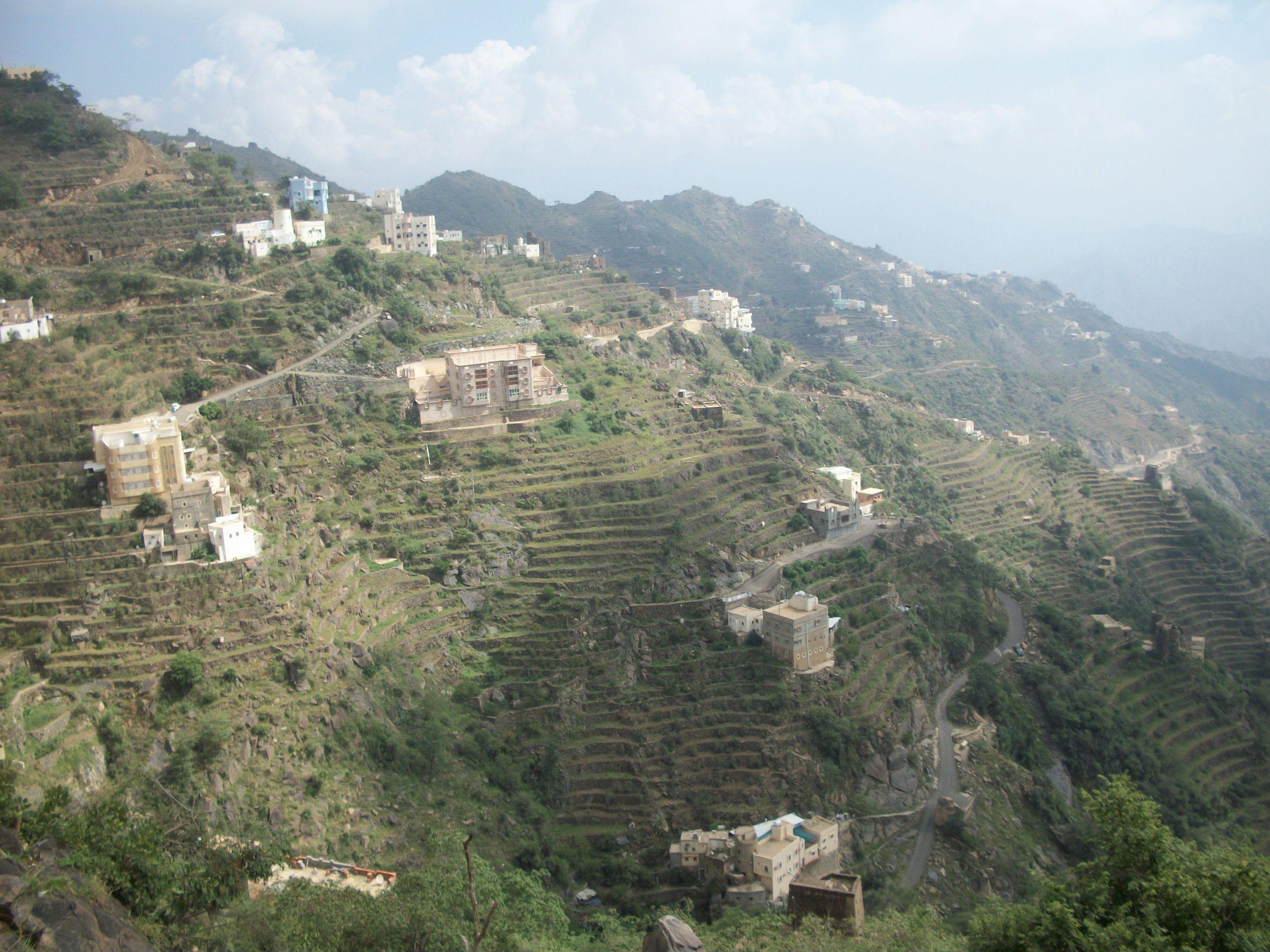 Stepped terraces in Faifa