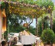 Kleine Gärten Gartenideen Best Of 190 Best Patio Images