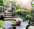 Kleine Garten Gestalten Einzigartig Reihenhausgarten Modern Gestalten