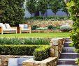 Kleine Garten Gestalten Luxus Tropengarten Verwandlung Traum Des Entertainers Fotografie