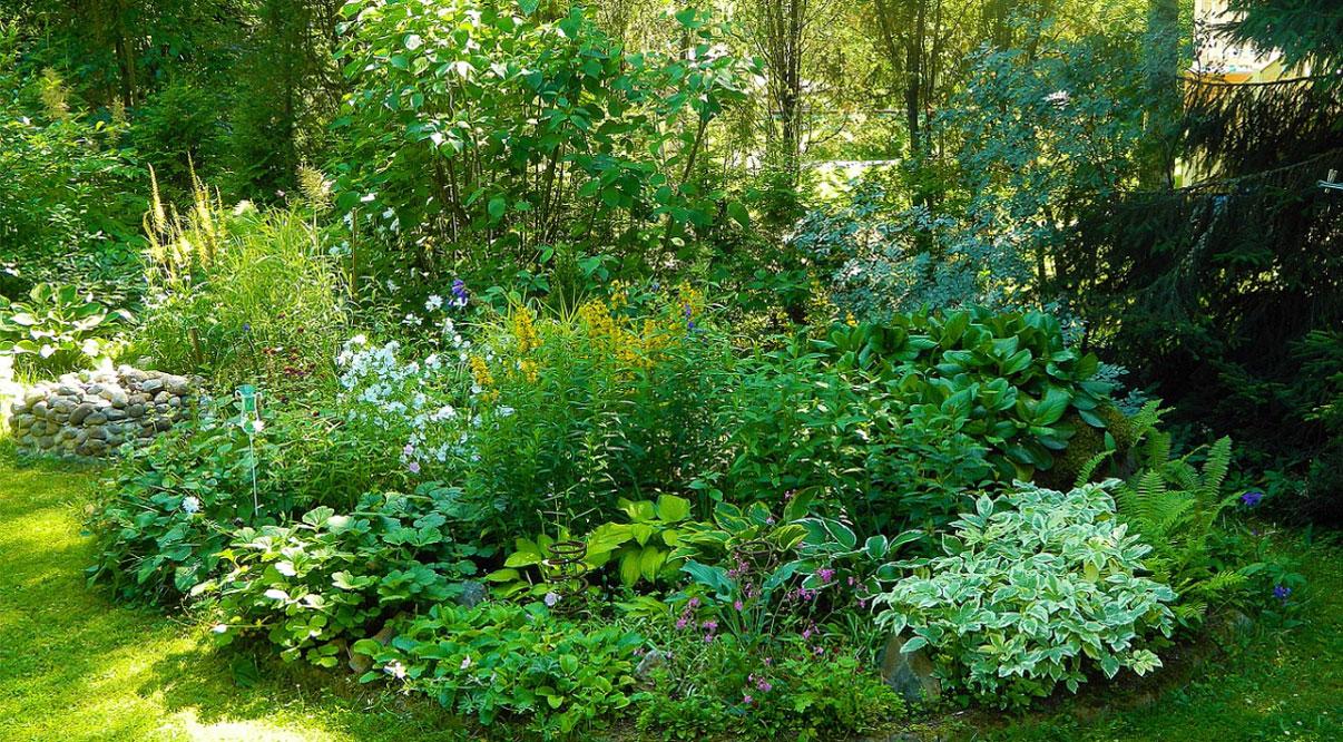 Tipps für den kleinen Garten