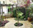 Kleiner Garten Ohne Rasen Inspirierend 41 Ideen Für Kleinen Garten – Die Gestaltung Bei Wenig Platz