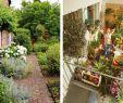 Kleiner Garten Ohne Rasen Schön Garten Planen