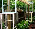 Kreative Ideen Gartendeko Holz Inspirierend Sprüche Für Alte Fenster Im Garten