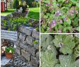 Kreative Ideen Gartendeko Holz Neu Garten Mit Alten Sachen Dekorieren