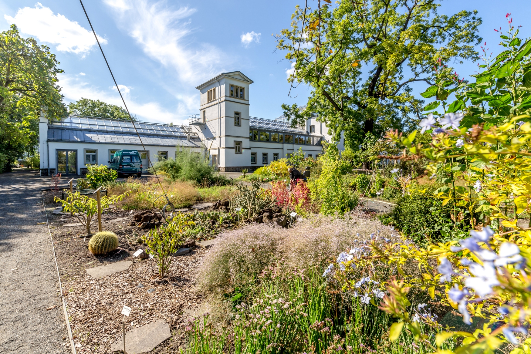 Botanischer Garten Sommer Pflanzen Natur Philipp Kirschner leipzigavel