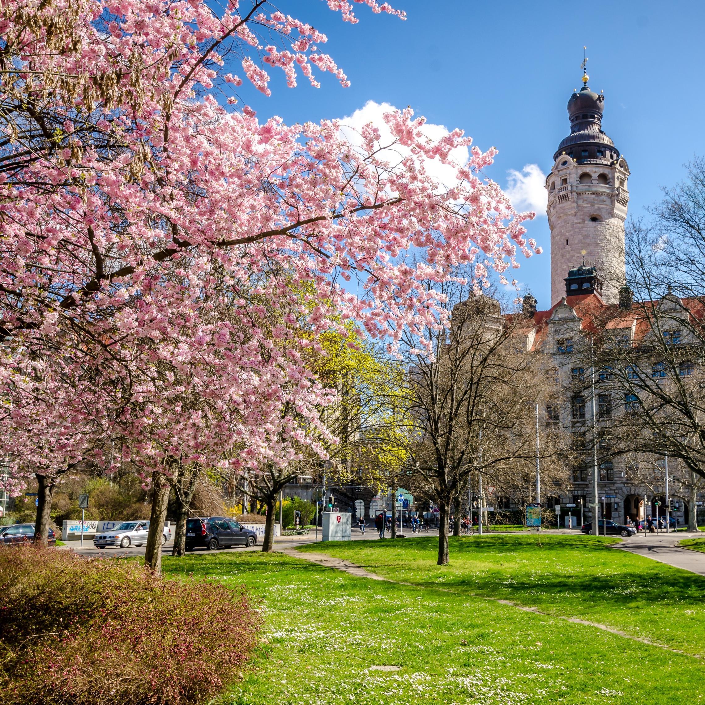 Leipzig Botanischer Garten Frisch Leipzig In Spring