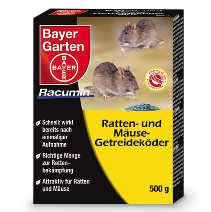 Löcher Im Garten Ratten Schön 33 Das Beste Von Ratten Im Garten Bekämpfen Genial
