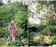 Mein Schöner Garten Gartenplaner Best Of Meet Maggie