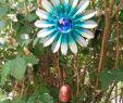 Mein Schöner Garten Gartenplaner Elegant O P Frankfurter Tabelle 4991 O