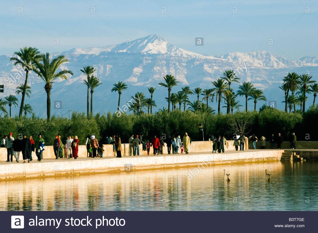 morocco marrakesh menara garden water basin palm trees and snow capped B3T7GE