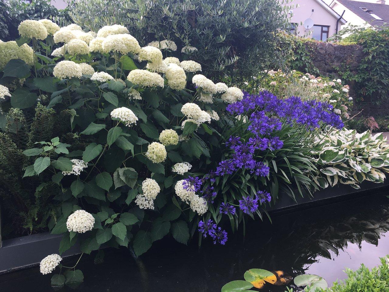 delta sensory gardens