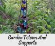My Garden Gardena Frisch Pin On Garden Ideas