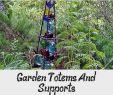 My Garden Gardena Frisch Pin On Garden Ideas