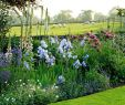My Garden Gardena Inspirierend Via Clive Nichols Garden Graphy the Old Rectory
